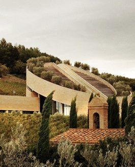 Alberto Bregani racconta Petra Winery