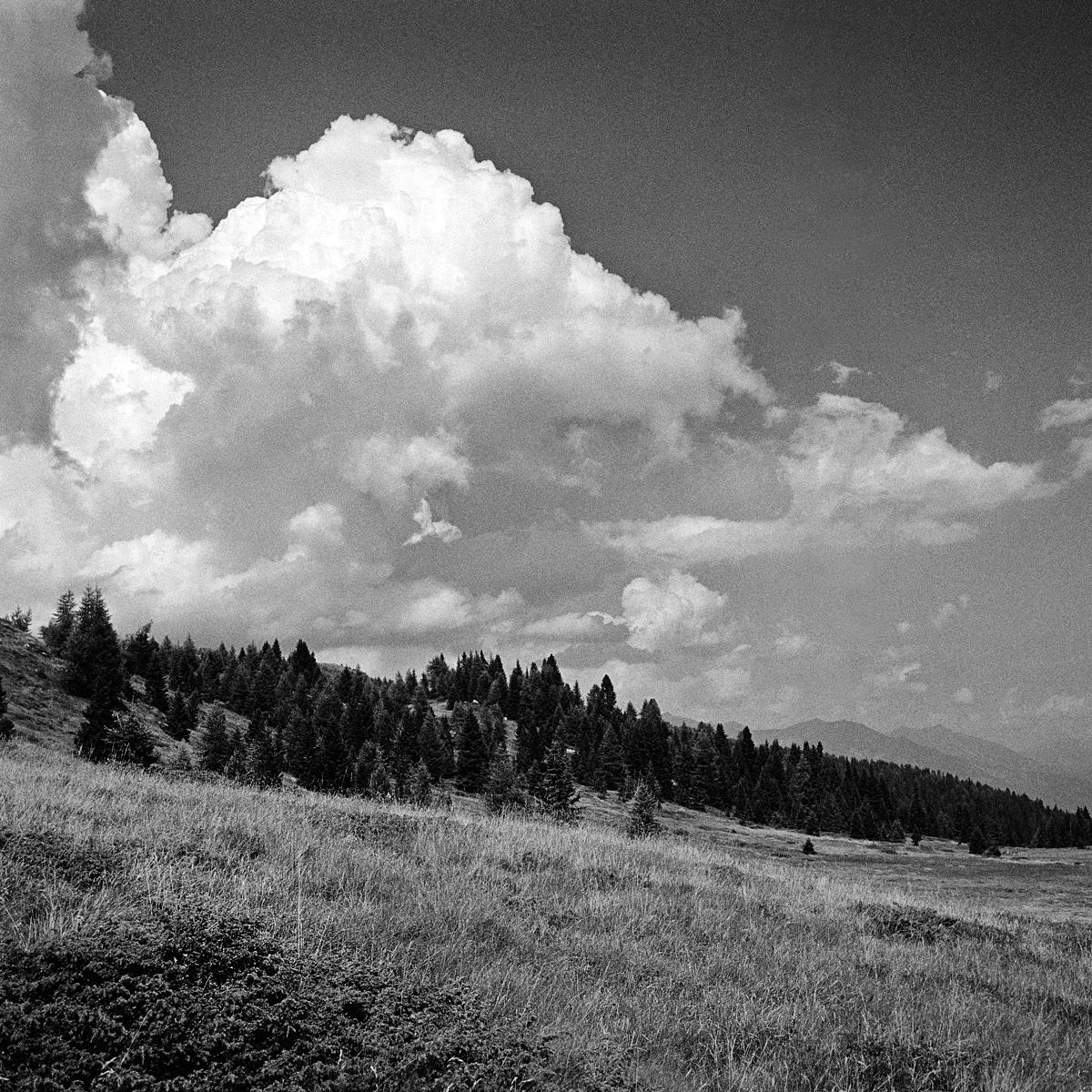 035 | Rolleiflex 3.5T | ©AlbertoBregani