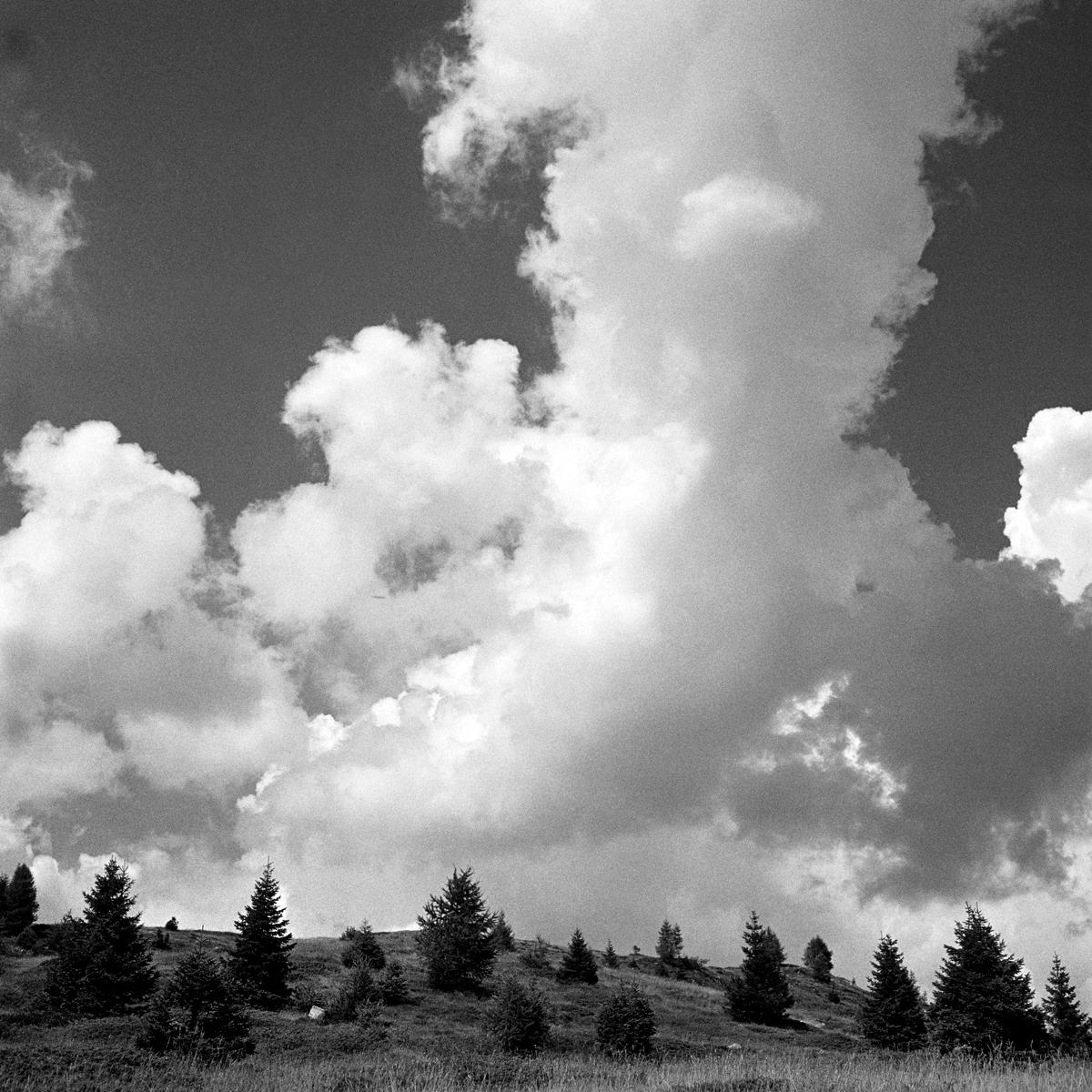 034 | Rolleiflex 3.5T | ©AlbertoBregani