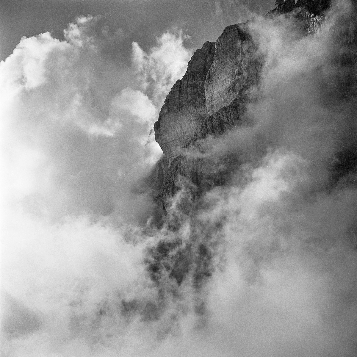 031 | Rolleiflex 3.5T | ©AlbertoBregani