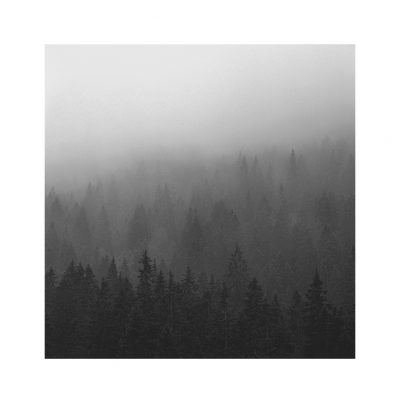Catalogo Replica 6x6 | N.14  -  Foggy Morning