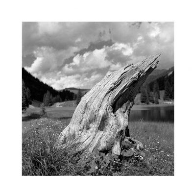 Catalogo Replica 6x6 | N.24 - Solitario. Lago di Valagola  (Dolomiti di Brenta)