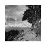 Catalogo Replica 6x6 | N.03 - Sentieri (Dolomiti di Brenta)