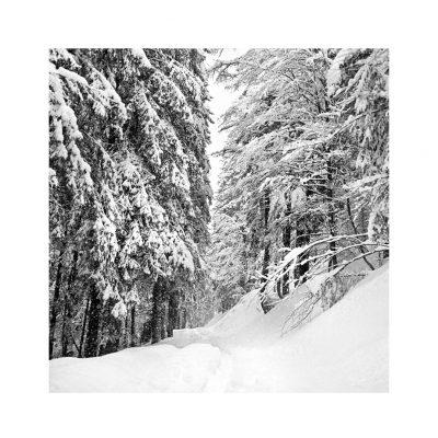 Catalogo Replica 6x6 | N.09 - inverno
