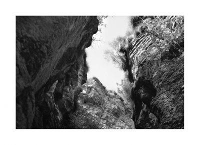 Catalogo Replica 6x9 | N.16 | Forra del Lupo