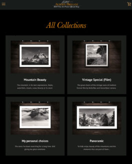 Alberto Bregani | Official Shop