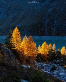 Storie d'Autunno | Valmalenco